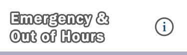 emergency out of hours dentist